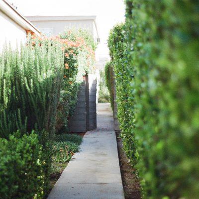 garden-way-2631
